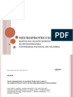 NEUROPROTECCION
