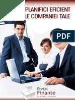 raport-PLANIFICARE FINC