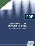 Sobrevivencia das empresas no Brasil 2013