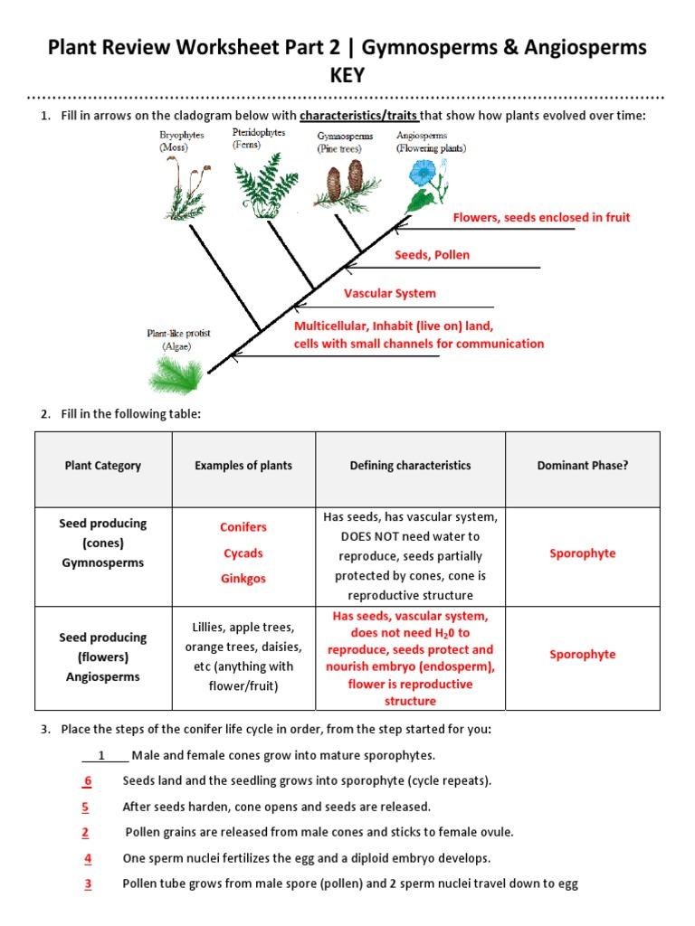 Plant Review Worksheet Part TWO (KEY) Updated 2013-2014.pdf