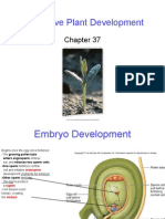 Q'bic Ch. 37 Vegetative Plant Development.ppt