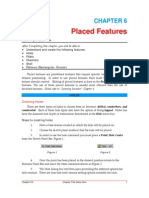Placed Features