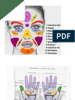 Reflexología aplicada sobre rostro y manos