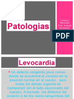 tercer pp ptologias ob andres
