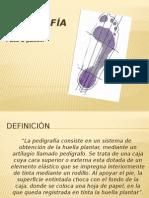Pedigrafía.pptx