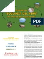 ING. Enciclopedia Geologia Del Peru