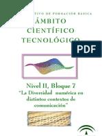 TEC Nivel II-B7
