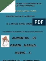 Instituto Tecnologico Superior de Venustiano Carranza Hernandez