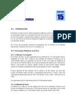 CAP15.doc