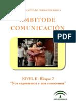 COM Nivel II-B7