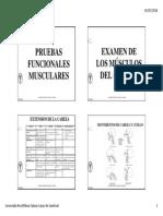 Pruebas Funcionales Musculares Completas Examen Muscular y Amplitud Articular