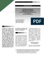 Estudio de Candida Dublienensis