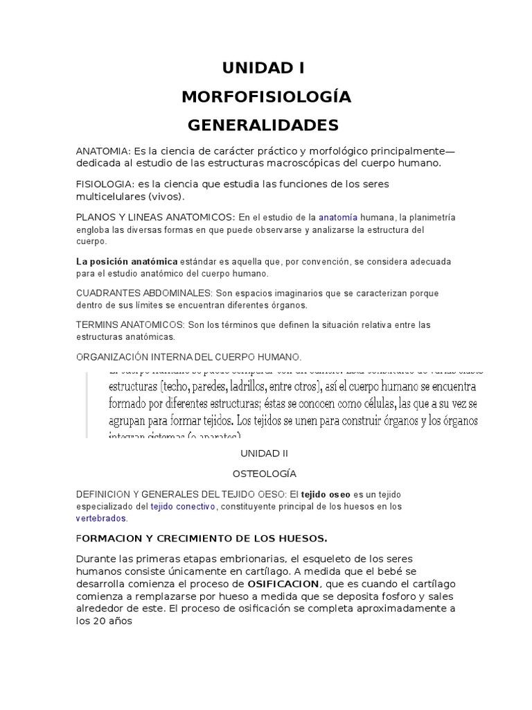 Magnífico Definición Anatomía Humana Elaboración - Anatomía y ...