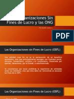 Organizaciones Sin Fines de Lucro en Chile