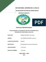 Practica Final-calidad de Agua, Rio Negro