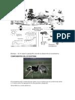 ecosistema biotipo