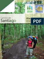 Camino Santiago ES 15