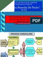 Programacion currricular
