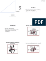 Management of talus fracture Kangar-bnw.pdf