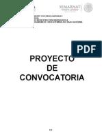 Proyecto de convocatoria