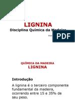 Lig Nina 20132