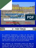 Restauração  da Fé Apostólica Módulo 4.2