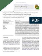 PCR Molecular Fasciola Hepatica