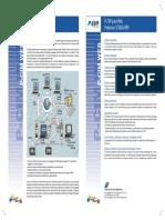 P-CIM Web - Spanish.pdf