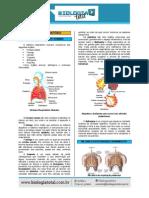 MATERIAL_20130804142159TeoriaSistemaRespiratorio.pdf
