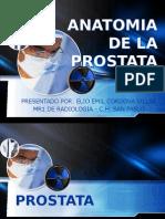 Anatomia y Vascularización de La Próstata