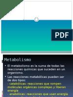 Metabolismo y Deporte
