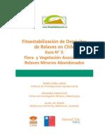 Fitoestabilización de Depósitos de Relaves en Chile Guía N° 3