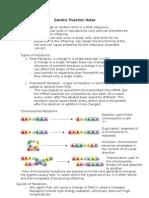 biology Genetic Mutation Notes