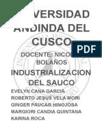 Industrializacion Del Sauco - Evaluacion de Peroyectos