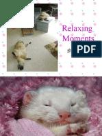Relaxin g Moment s
