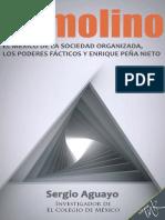 Remolino. Sergio Aguayo, Capítulo 8