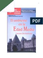 El Ambiente en La Edad Media
