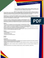 Curso Basico en Contabilidad Publica.pdf