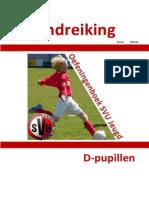 Handreiking D Pupillen