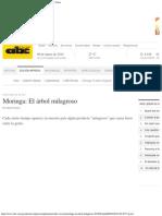 Moringa_ El Аrbol Milagroso - Edicion Impresa - ABC Color