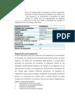 ESPECIFICACIONES TRABAJO PLAN BASICO EN SALUD OCUPACIONAL.docx