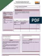 Proceso de Enfermería Sin Patología Presentada