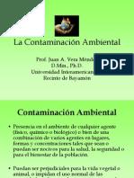 La Contaminación Ambiental.pdf