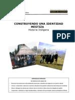 13 Historia Indigena