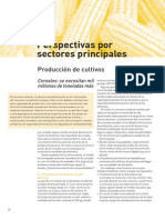 Perspectivas Por Sectores