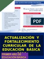 Actualización Reforma Curricular Primer Año