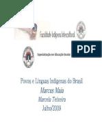 Povos e Linguas Indigenas do Brasil.pdf