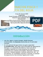 IV Parcial - Contaminación Física y Química del Agua.pptx
