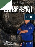 Beginner's Guide to BJJ