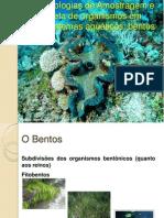 Aula 03 BIO 723_Bentos.pdf